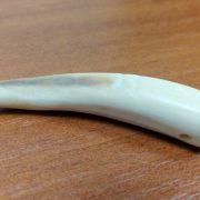 Брелок фрагмент кости мамонта 06 1000