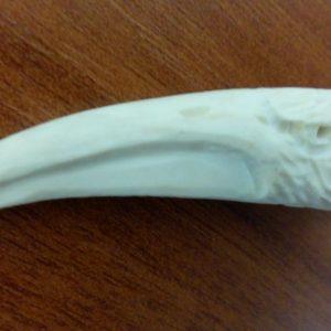 Профиль орла фрагмент рога косули 01 1000