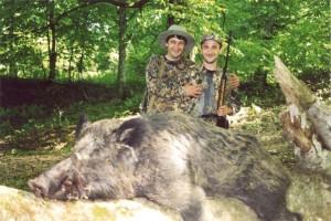 Wild boar Кабан 001