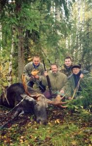 European moose Лось 021