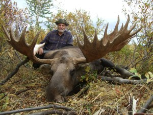 Kamchatka moose Лось 031
