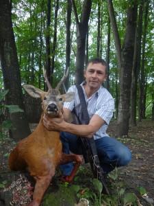 European roe deer Европейская косуля 001