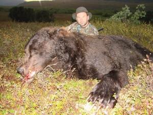 Bear Медведь 002