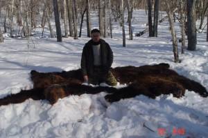 Bear Медведь 005