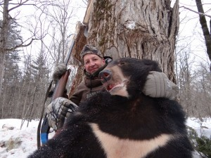 Bear Медведь 006