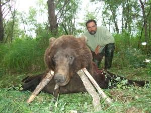 Bear Медведь 008