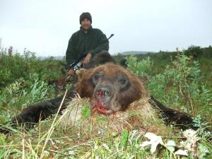 Bear Медведь 009