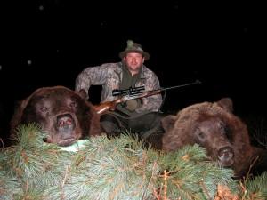 Bear Медведь 012
