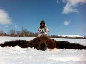 Bear Медведь 019