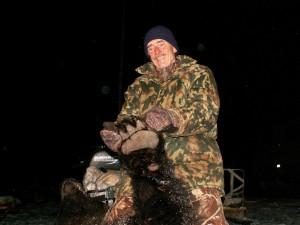 Bear Медведь 021