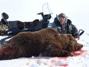 Bear Медведь 026