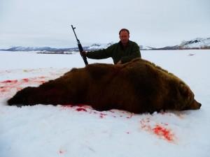 Bear Медведь 027
