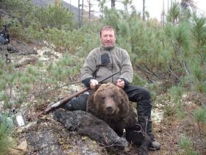 Bear Медведь 029